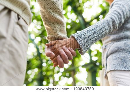 Hands of senior couple during walk in tree alley on sunny day