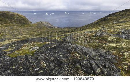 rugged Fogo Island coastline with icebergs in distance; Newfoundland, Canada