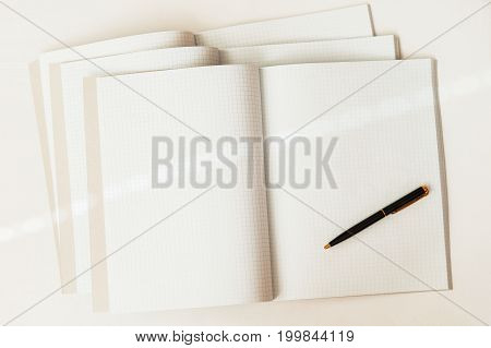 Close-up of pen on a background of large open blank and empty notebooks in a cage, top view, texture. Place for text, the concept of starting school and any new cases