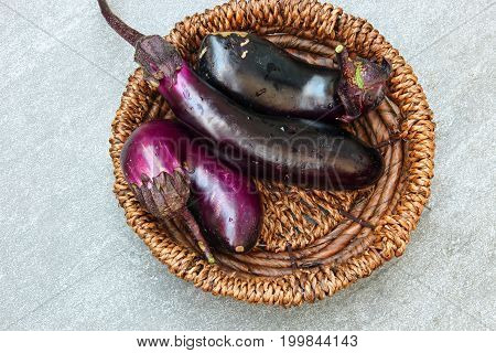 Long Eggplants or Brinjal on a stone background