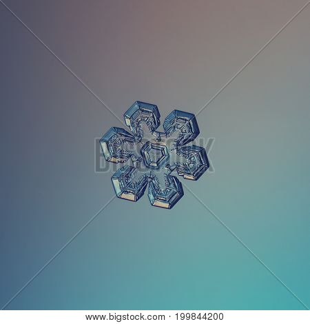 Real snowflake macro photo: small snow crystal of star plate type with glossy surface, six short, broad arms and complex inner pattern. Snowflake glittering on smooth blue gradient background.