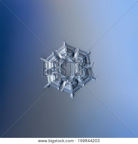 Real snowflake macro photo: snow crystal of star plate type with glossy surface, fine hexagonal symmetry, six short broad arms and flat central hexagon. Snowflake glittering on smooth blue background.