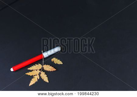 Close-up of a pen, red color, autumn yellow leaves on black background. Place for text, concept of starting school, back to school, education