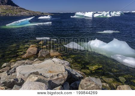 small icebergs in quiet bay on Fogo Island, Newfoundland, Canada
