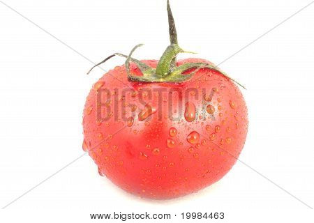 Red Tomatoe With Water Drops