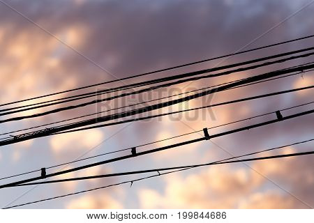Electric wires at sunset as an abstract background