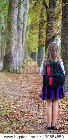 Pretty Beautiful Blonde Child Schoolgirl From Back Enjoying Back To School And Walking Through Tree