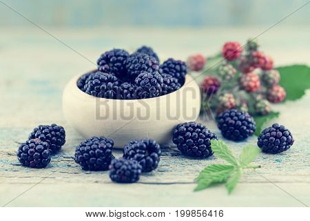 Close Up Of Ripe Blackberries Over Rustic Turquoise Wooden Table