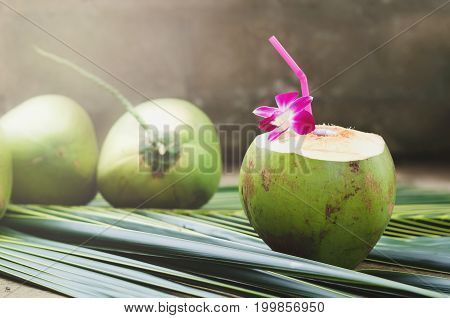drinking sweet coconut water and orchid flower on green leaf