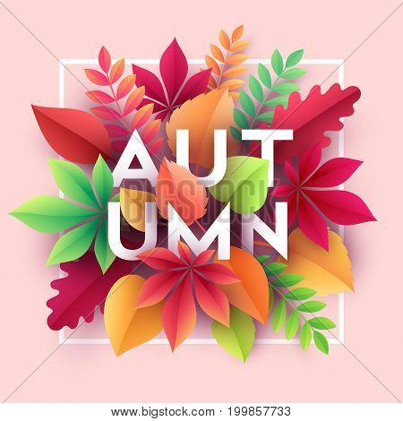 Autumn banner background with paper fall leaves. Vector illustration EPS10