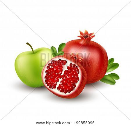 Realistic Pomegranate or garnet on the white background. Vector illustration EPS10