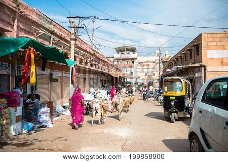 JODHPUR RAJASTHAN INDIA - MARCH 04 2016: Horizontal picture of local women using animals as transport in Jodhpur the blue city of Rajasthan in India.
