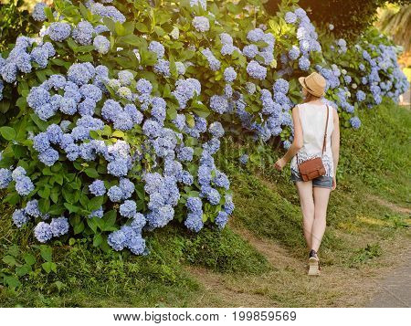 Girl In The Hat Walks In Park Along The Flowering Bushes. Back View