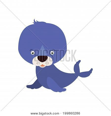 white background with colorful caricature cute seal aquatic animal vector illustration