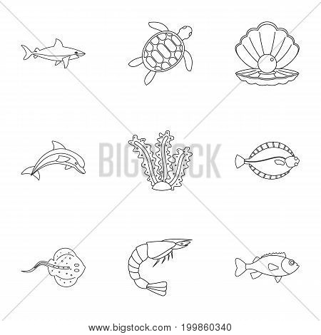 Underwater fauna icons set. Outline set of 9 underwater fauna vector icons for web isolated on white background