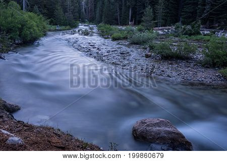 Water Flowing In River In Sequoia