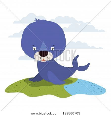 white background with color scene cute seal aquatic animal in grass vector illustration