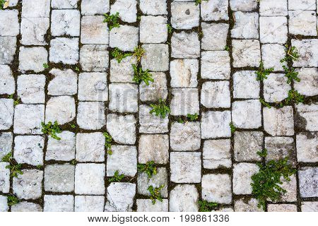 Paving Stones Road Texture in Czech Republic