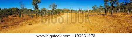 panorama of outback Australia with dirt road in the center