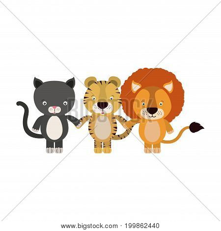 white background with colorful caricature cat tiger and lion cute animals holding hand vector illustration