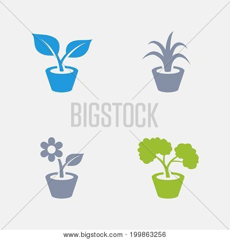 House Plants - Granite Icons. A set of 4 professional, pixel-perfect icons designed on a 32x32 pixel grid.