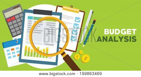 financial and monetary budget analysis vector illustration design