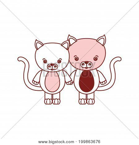 white background with red color silhouette sections of caricature couple cute animal cats vector illustration