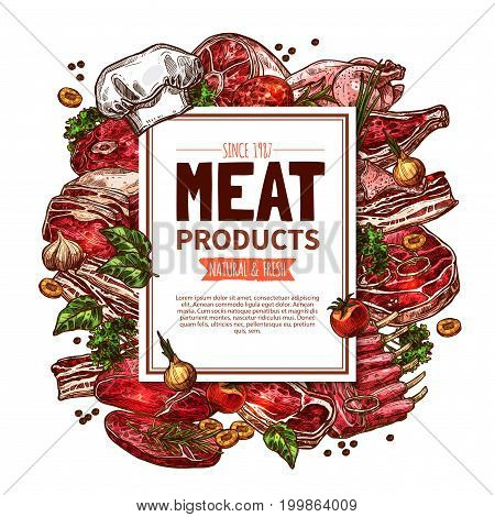 Meat product butcher shop poster. Fresh meat cut of beef steak, pork rib, chop and bacon, ham, lamb tenderloin and chicken with spice and herbs sketch label for meat store or farm market design