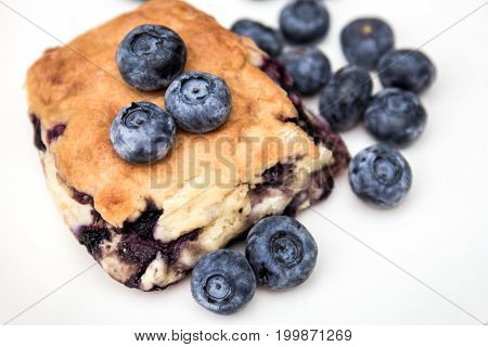 blueberry scone close up with blueberries on white plate