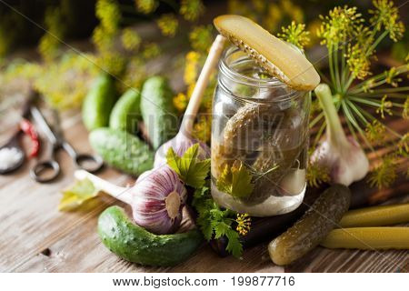 Homemade Organic Lightly Salted Cucumbers With Herbs And Garlic