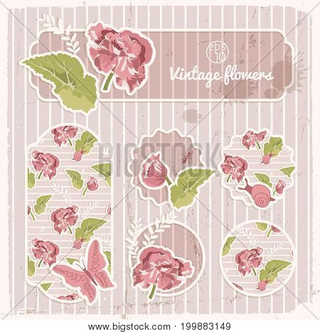 Vintage banners and stickers collection with red flowers green leaves on striped background isolated vector illustration