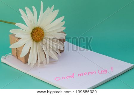A white chamomile flower and a notebook with the text