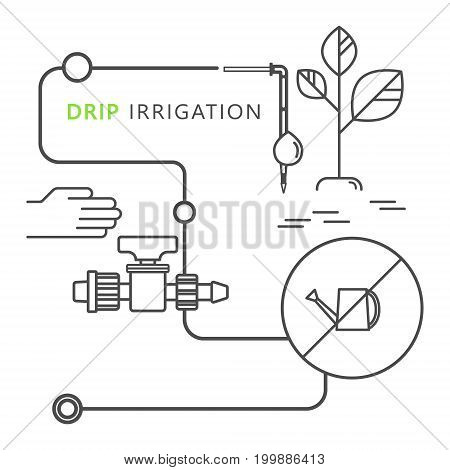 Infographics system of drip irrigation. Vector Icons. Watering can, starting tap for drip tape, hand, dropper and plant.