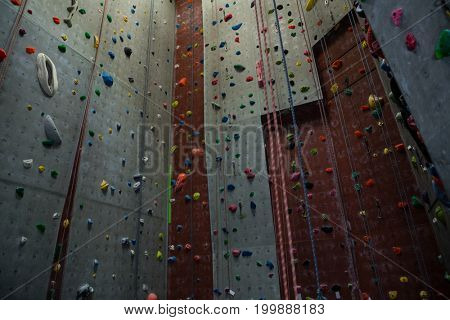 Low angle view of ropes hanging by climbing wall in gym
