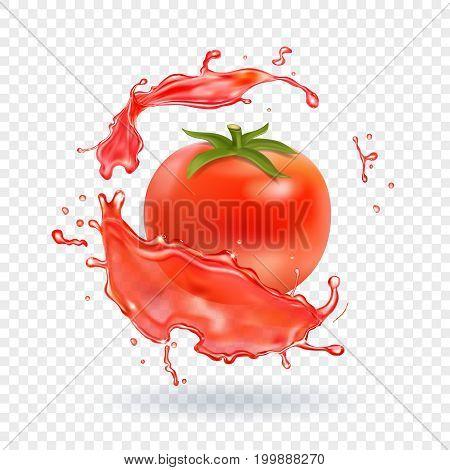 Tomato juice fresh splash. Realistic vector icon.