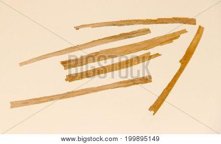 Stick Pressed Dry Fall Iris Leaf Straw   Wooden Planks Set