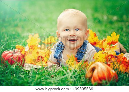 Portrait of cute funny adorable smiling Caucasian baby boy with blue eyes in t-shirt and jeans romper lying on grass field meadow. Baby in yellow autumn leaves pumpkins. Halloween Thanksgiving.