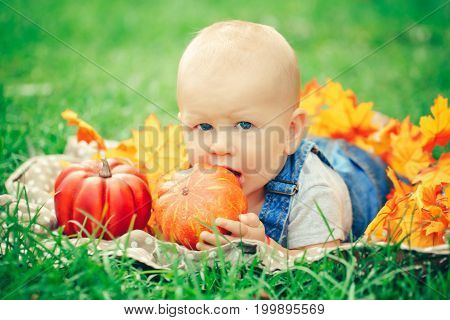 Portrait of cute funny adorable blond Caucasian baby boy with blue eyes in t-shirt and jeans romper lying on grass field meadow in yellow autumn leaves. Baby eating pumpkin. Halloween Thanksgiving.