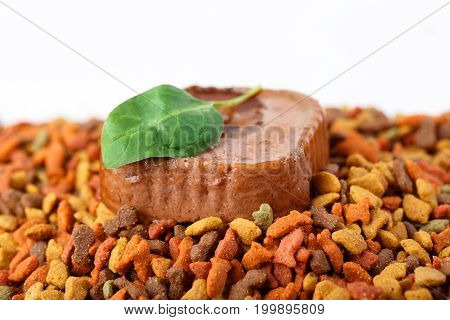 Colorful dry and wet canned pet cat dog food with green fresh leaf on white background. Closeup macro detail shot with copyspace for text.