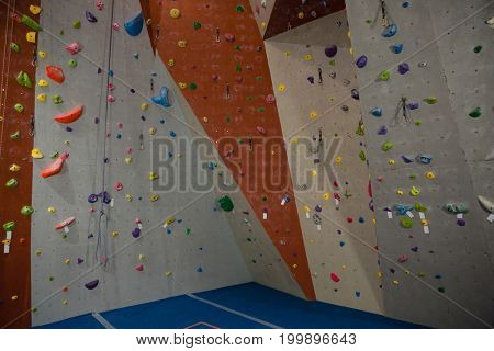 Colorful handgrips on climbing wall at gym