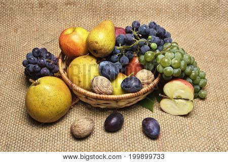 Autumn fruits. Autumn still life with assorted fruit vegetables berries and nuts
