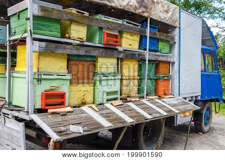 Colorful and vibrant bee hives on old truck in Carpathian mountains Romania.