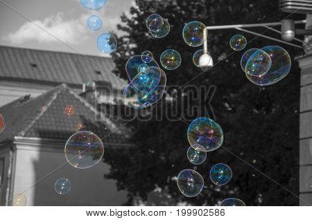 colorful soap bubbles wth black white background