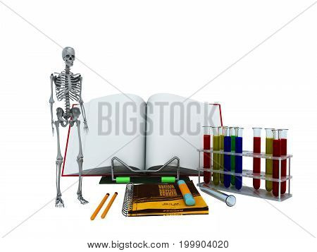 Concepts Of School And Education Biology Test Tubes Skeleton 3D Render On White Background No Shadow