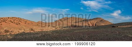 Panoramic view of beautiful landscape with hills and plants at sunny day
