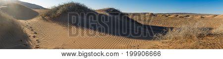 beautiful landscape of sunlit desert against the sky