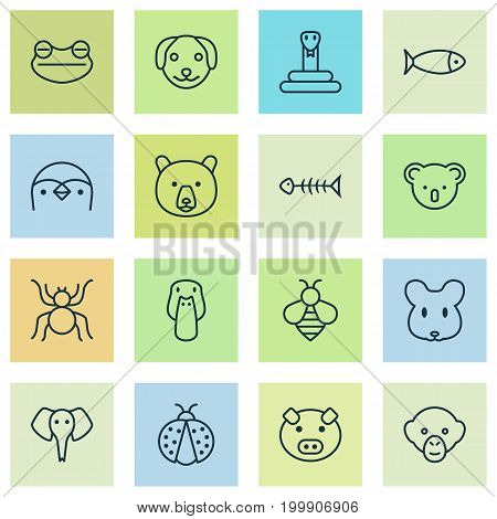 Zoo Icons Set. Collection Of Marsupial, Grizzly, Seafood Skeleton And Other Elements