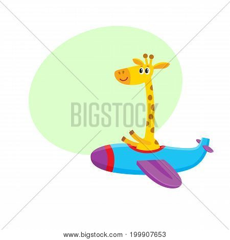Cute funny giraffe pilot character flying on airplane, cartoon vector illustration with space for text. Little baby giraffe pilot, animal character flying in open airplane