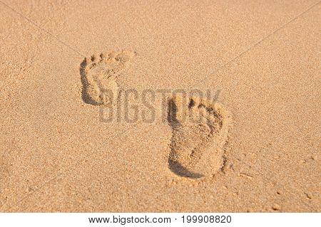Stamp Of Feet On Sand On The Beach With Sunshine In The Morning