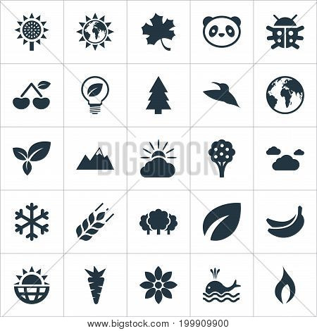 Elements Planet, Solar Energy, Bird And Other Synonyms Bird, Summit And Ignite.  Vector Illustration Set Of Simple Natural Icons.